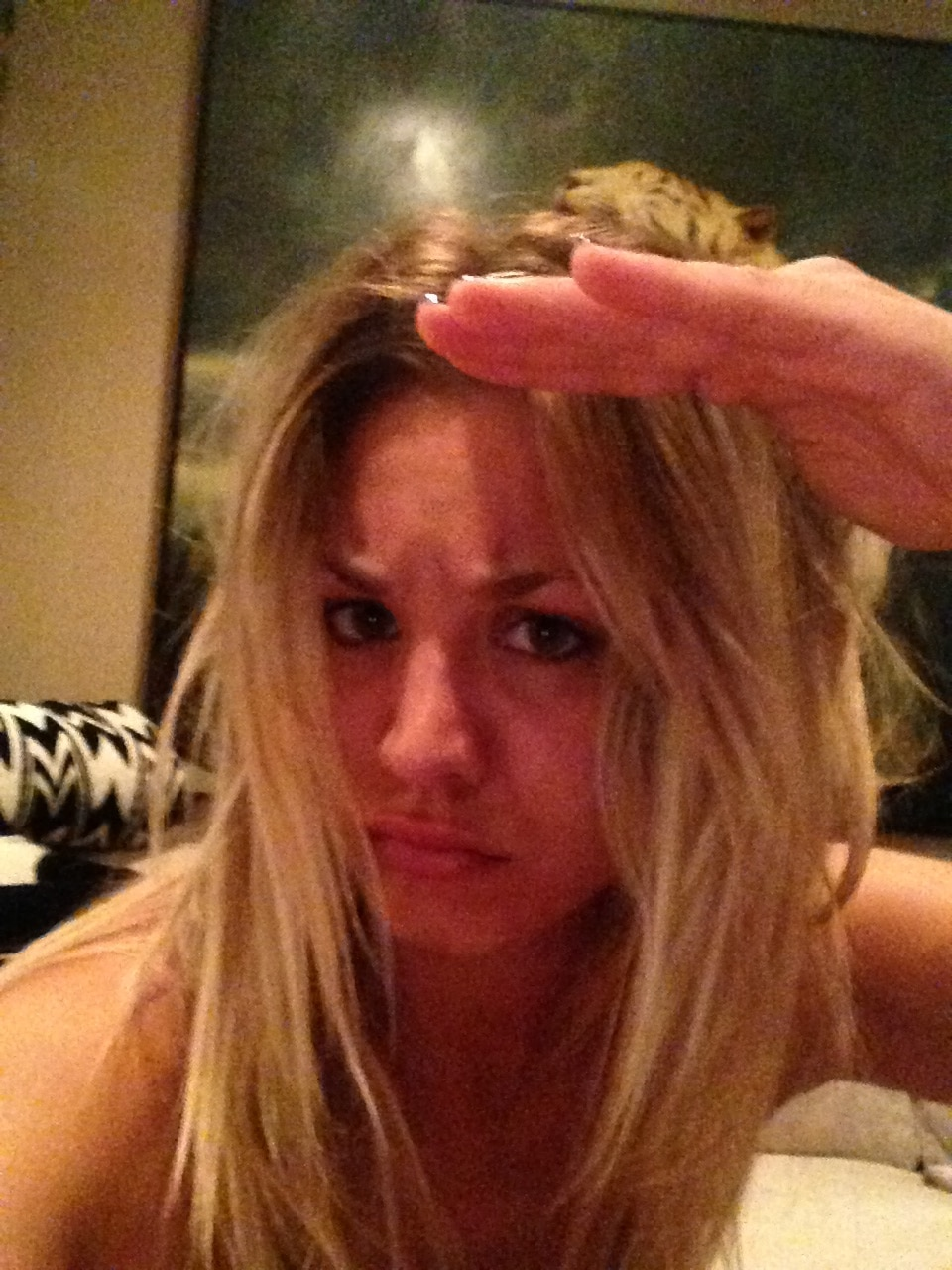 The Fappening Kaley Cuoco Nude Leaks (11)