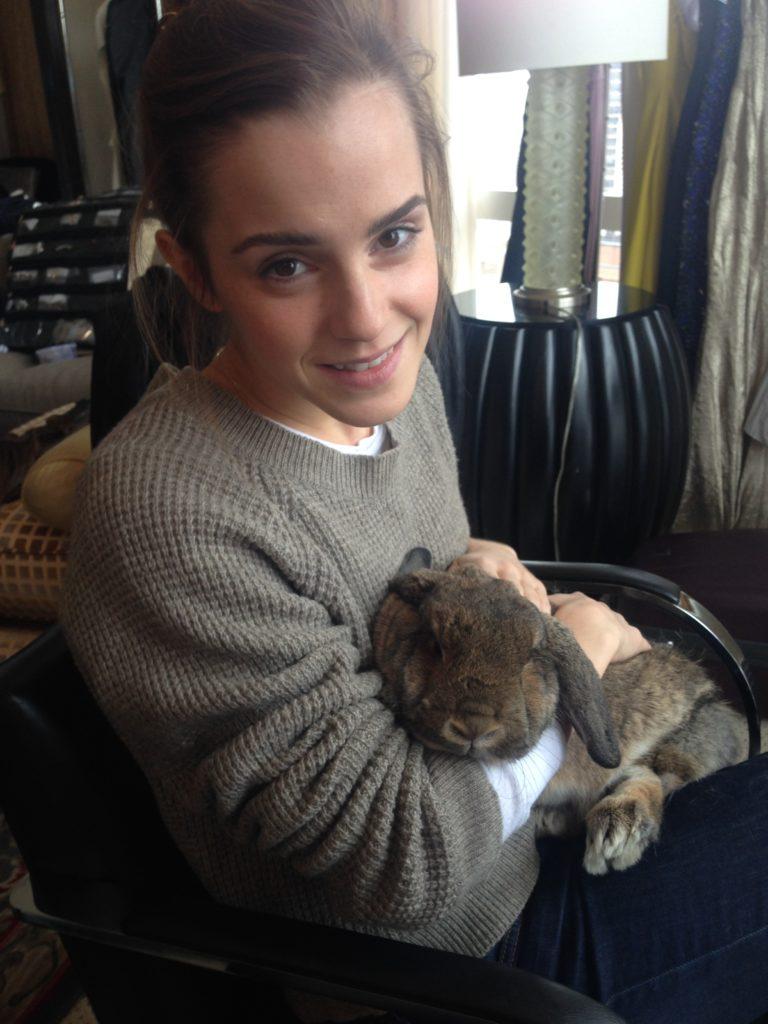 Emma Watson boobs showing